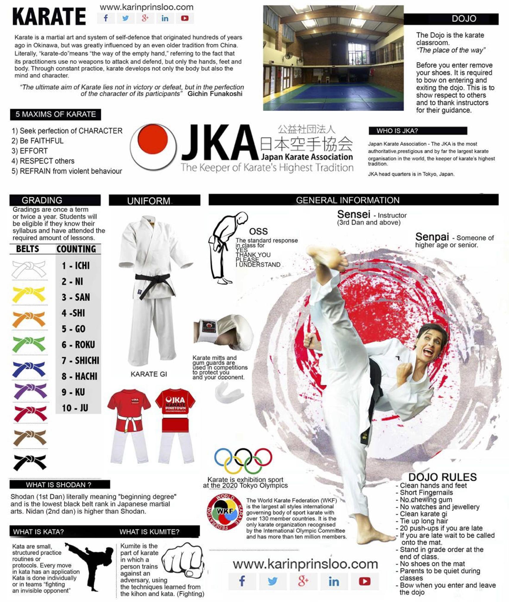 karate-westville-durban-karin-prinsloo-pinetown-jka-karate-institute-cowies-hill-karate-highway-karate-karate-infographic-what-is-karate